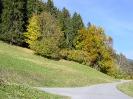 Waldstueck