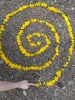 Blumenspirale